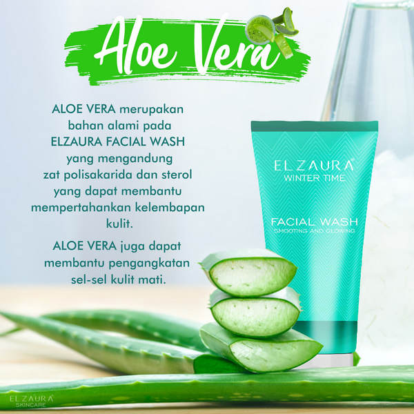 elzaura facial wash