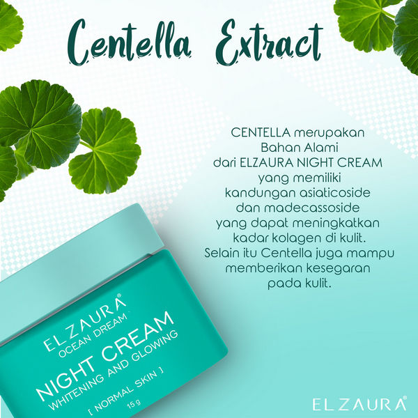 manfaat night cream elzaura