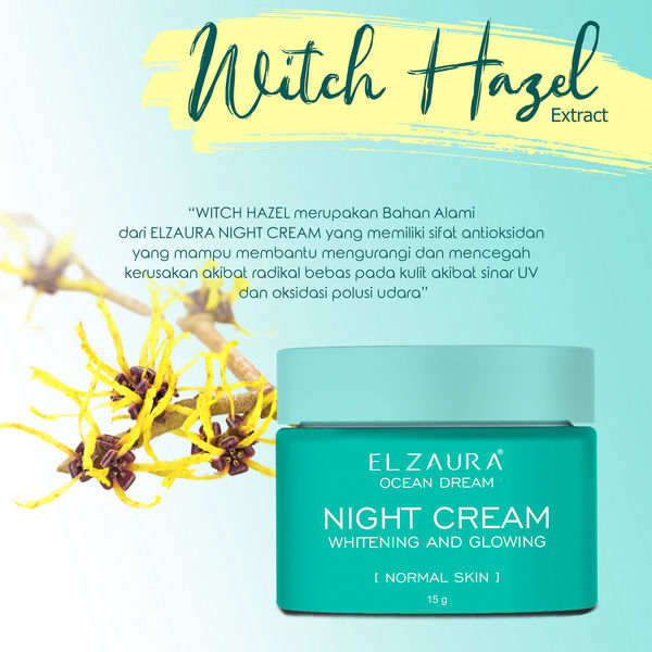 kandungan pada night cream